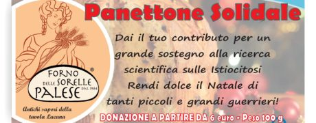 Panettone solidale AIRI 2018